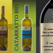 vino_catarratto